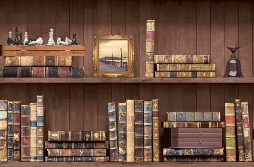 Holden Decor Bookcase Faux-Effect Wallpaper