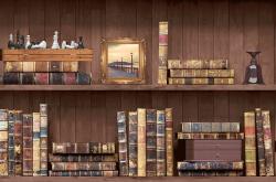 Holden Decor Bookcase Faux-Effect Wallpaper