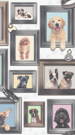 Puppy Love Dogs in Frames Animal Wallpaper