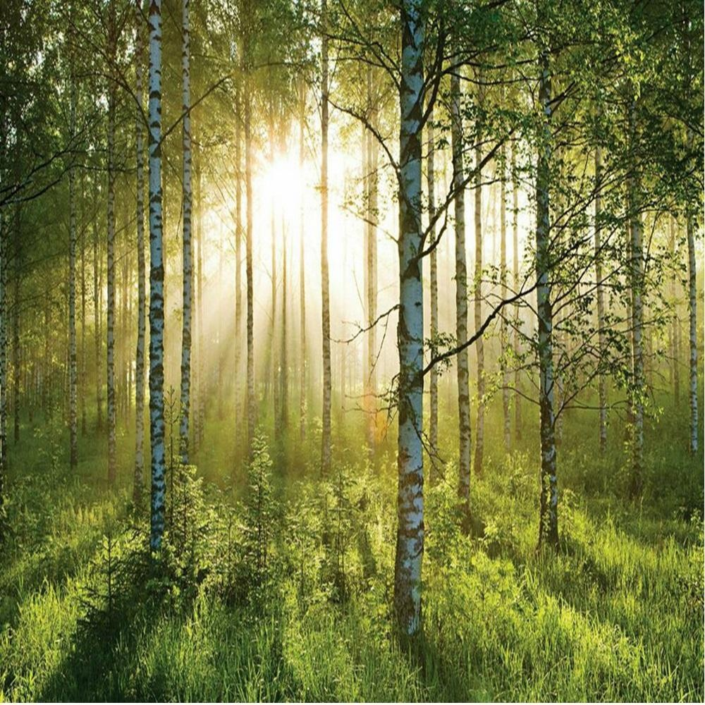 1 wall autumn forest giant wallpaper mural w8p forest 003 for Autumn forest wallpaper mural