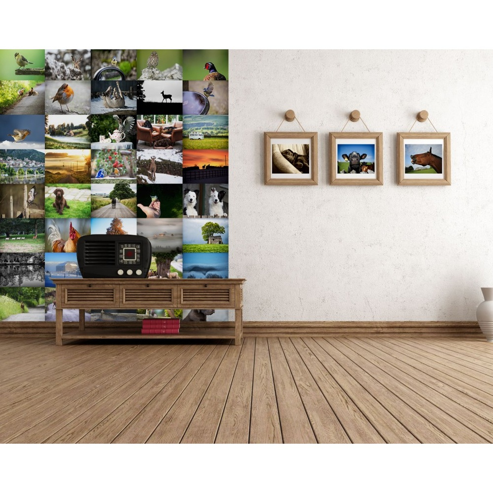 1 wall villager jim animal photo 64 piece creative collage wall art