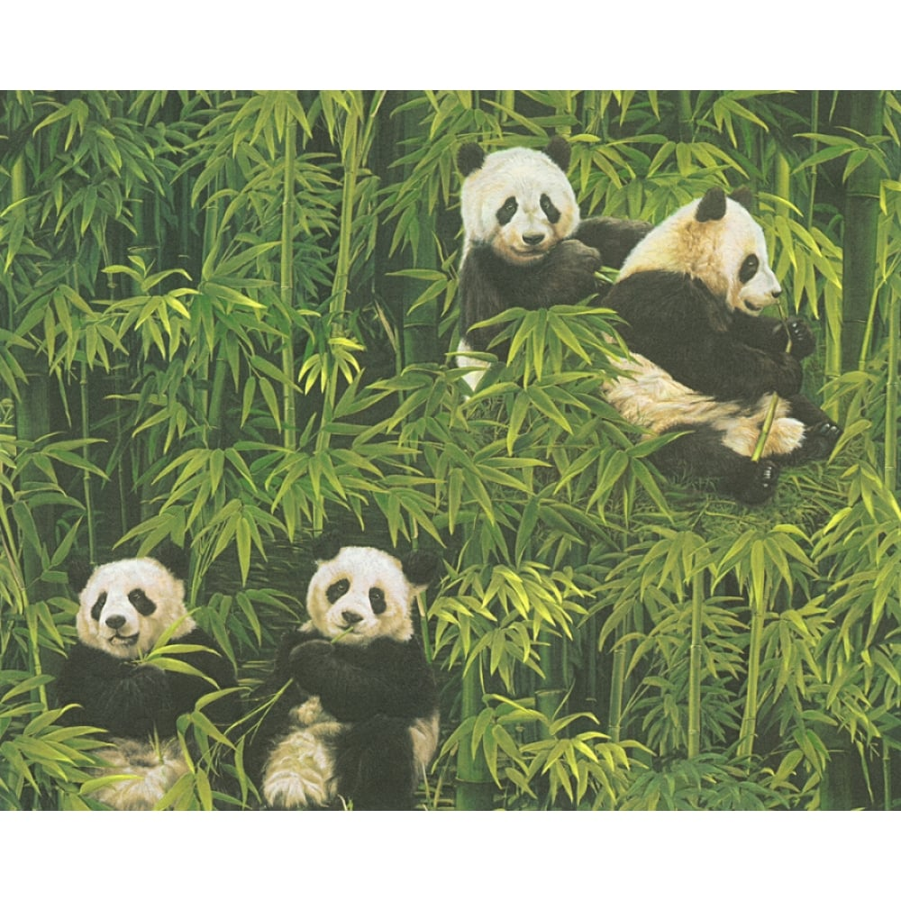 as creation panda pattern wallpaper bamboo forest embossed vinyl