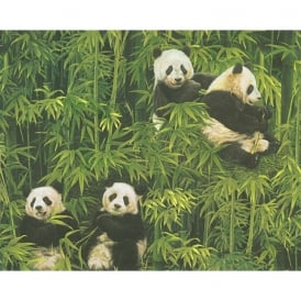 AS Creation Panda Pattern Wallpaper Bamboo Forest Embossed Vinyl 336351