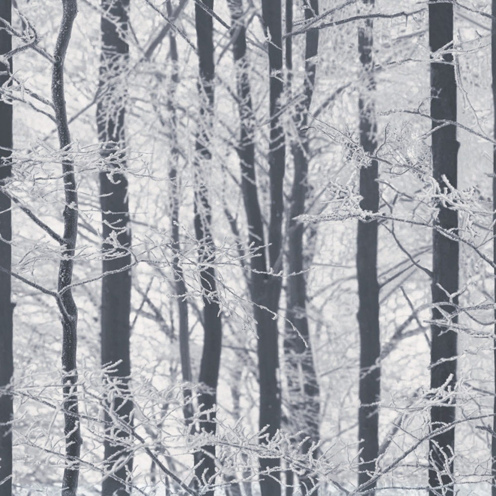 Arthouse Frosted Wood Forest Pattern Trees Glitter Wallpaper 670200