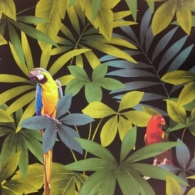 Direct Rainforest Jungle Songbird Parrot Motif Leaf Pattern Wallpaper J86404