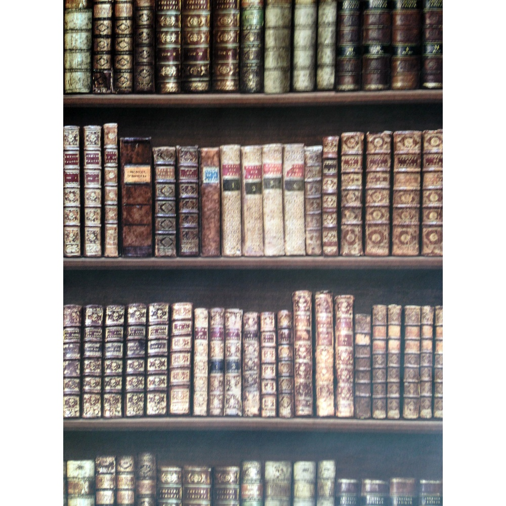 Direct bookcase classic leather books library mural for Bookshelf mural wallpaper