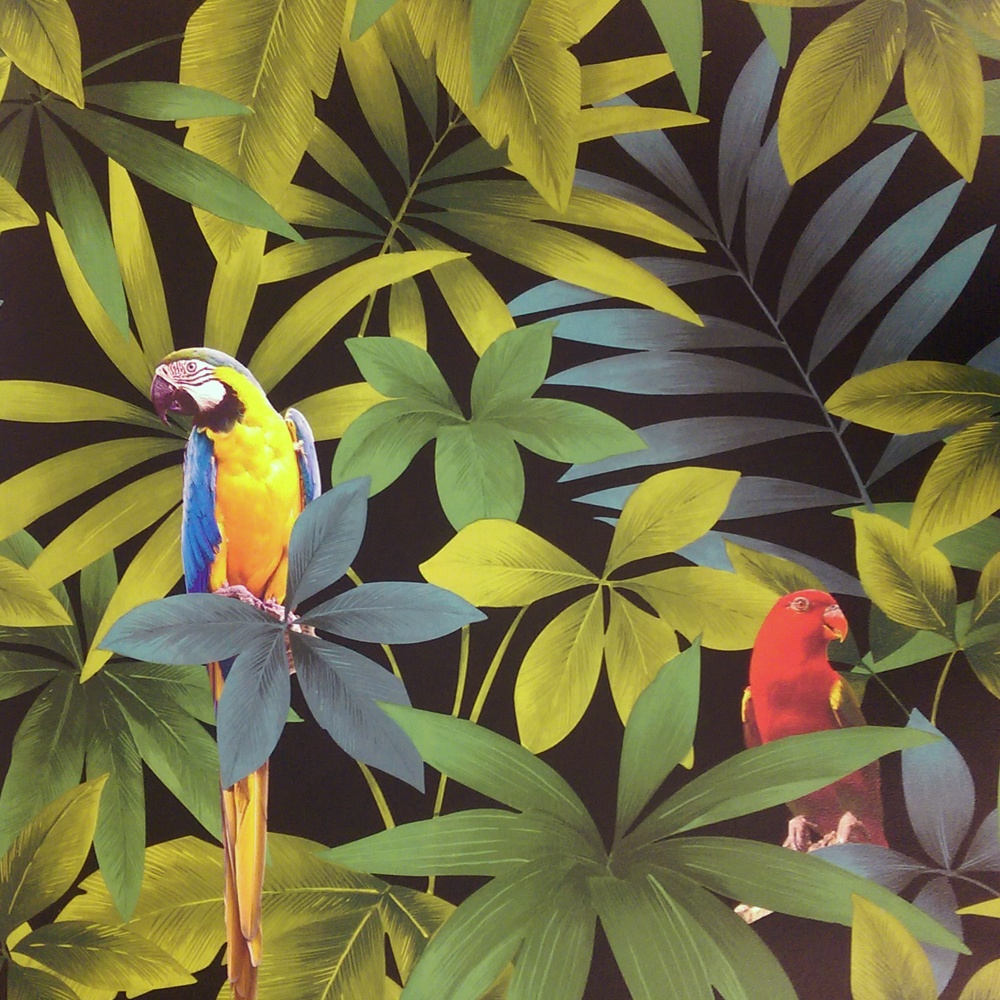 Direct Rainforest Jungle Songbird Parrot Leaf Pattern