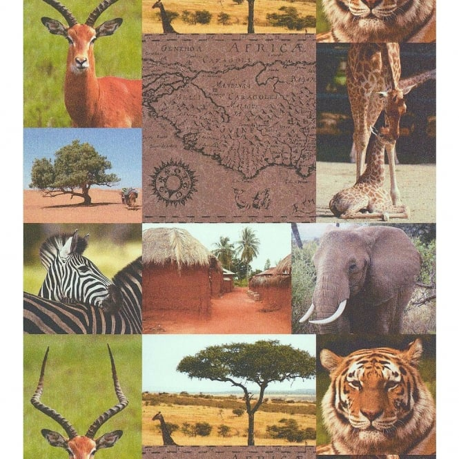 Galerie Wallcoverings Galerie Africa Zebra Elephant Tiger Photo Collage Wallpaper 51137508