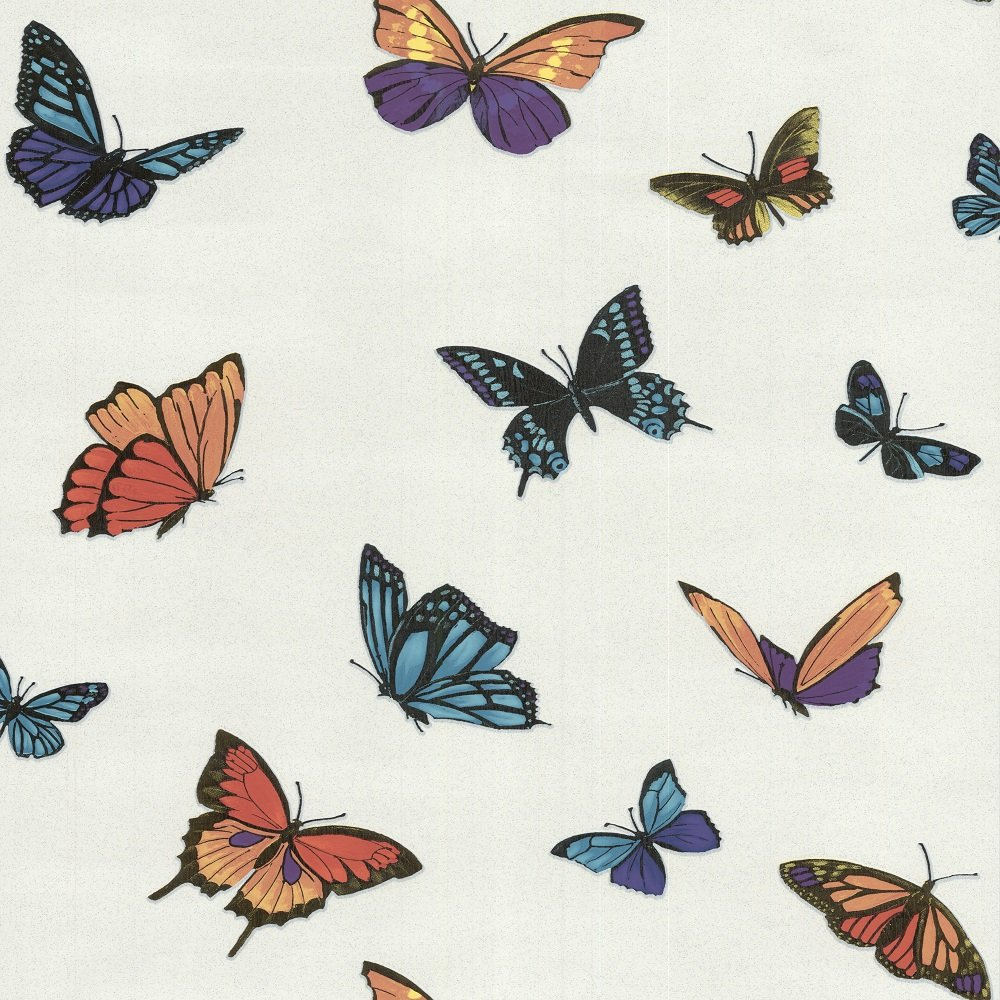 Graham brown julien macdonald flutterby butterfly for Flutterby wallpaper