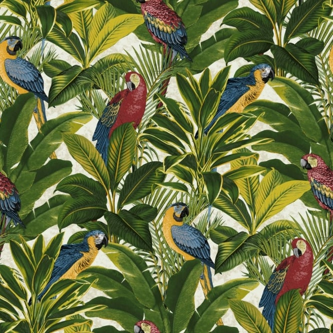 Grandeco Ideco Exotic Bird Pattern Parrot Motif Tropical Leaves Wallpaper A11502
