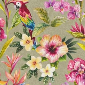 Holden Décor Bird Of Paradise Floral Pattern Flower Parrot Motif Wallpaper 98431
