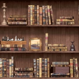 Holden Vintage Book Case Pattern Wallpaper Faux Effect Wood Shelf Library 11950