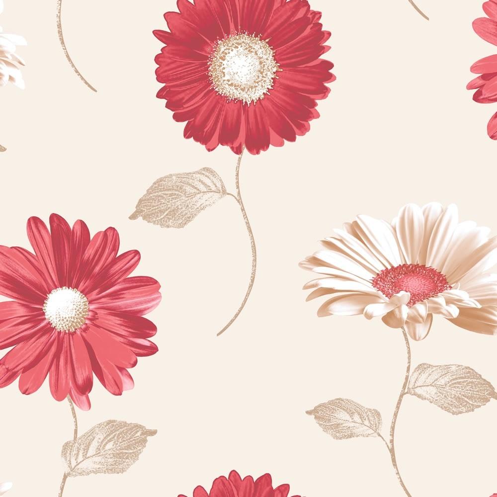best Gerbera Daisy images on Pinterest