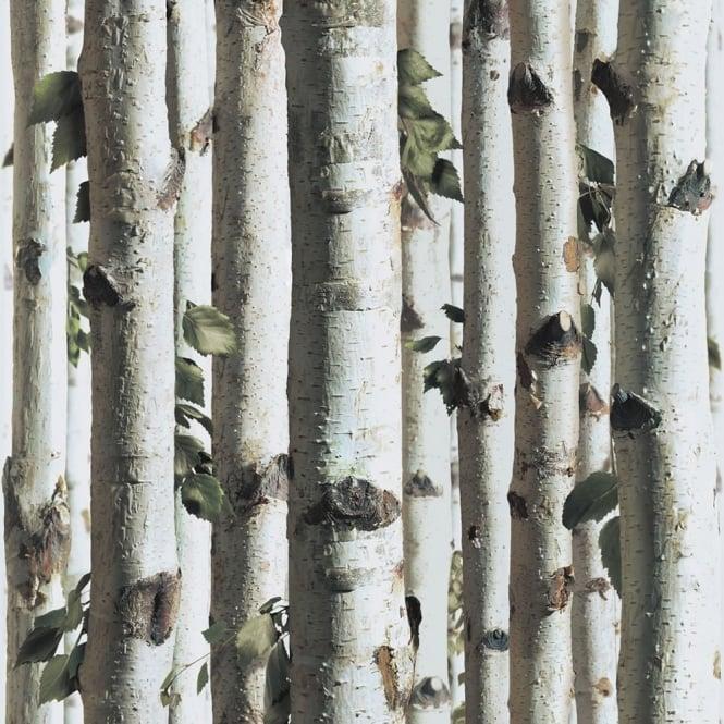 Muriva Forest Wallpaper J21517 White Brown Green I