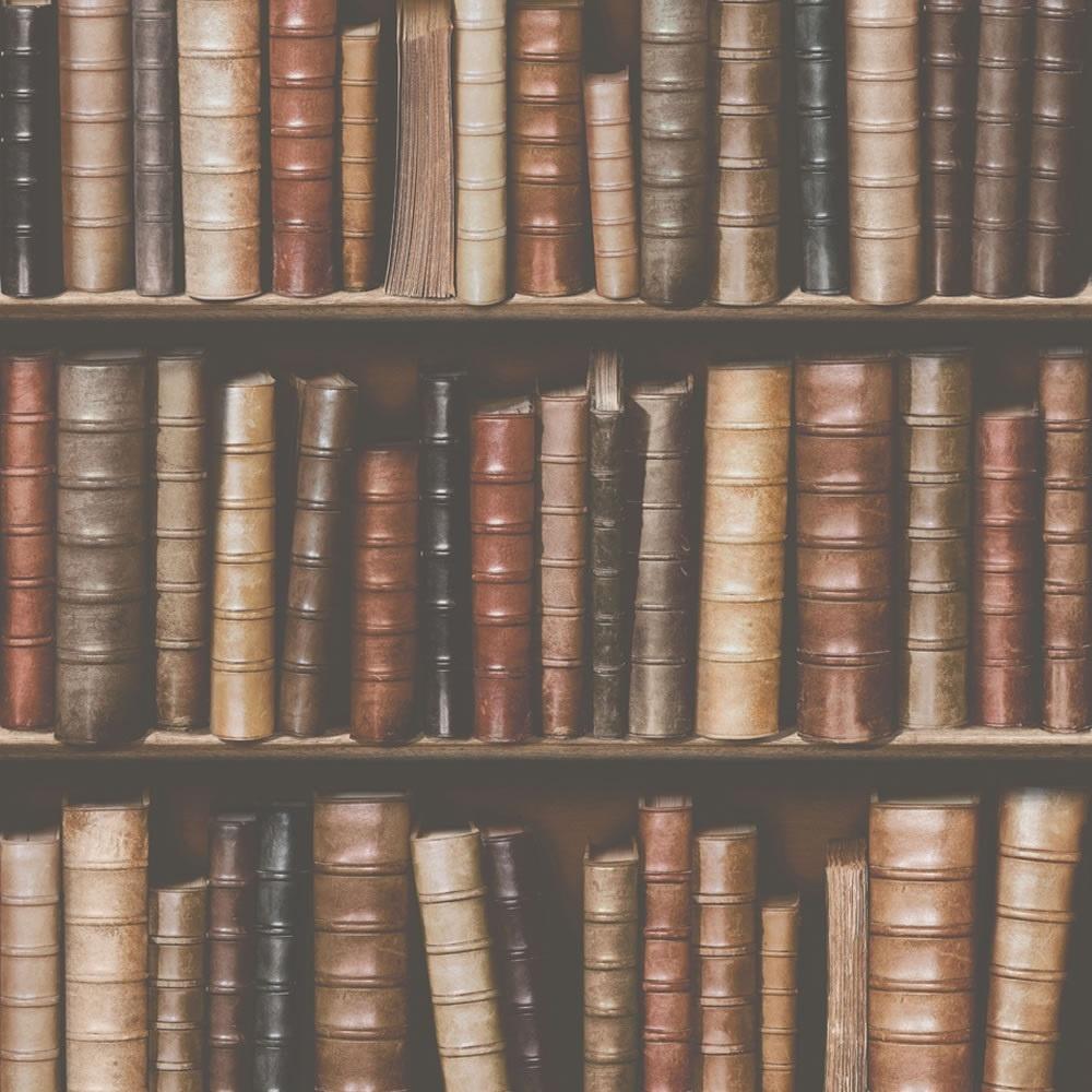 Muriva Bookcase Shelves Library Embossed Vinyl 10m