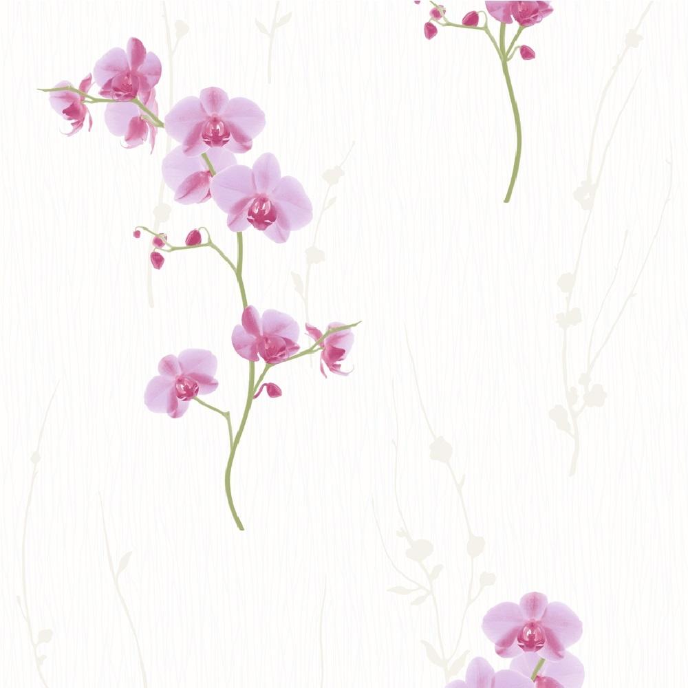 muriva orchid floral wallpaper 576313 pink i want. Black Bedroom Furniture Sets. Home Design Ideas