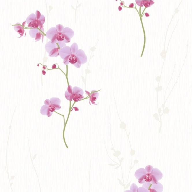 Muriva Orchid Floral Wallpaper 576313