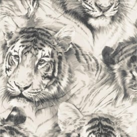 P+S Home Sweet Home Tiger Head Animal Wildlife Big Cat Wallpaper 45036-30