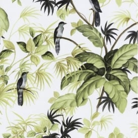 P+S International Tropical Exotic Birds Trees Leaves Wallpaper 05550-20