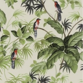 P+S International Tropical Exotic Birds Trees Leaves Wallpaper 05550-40