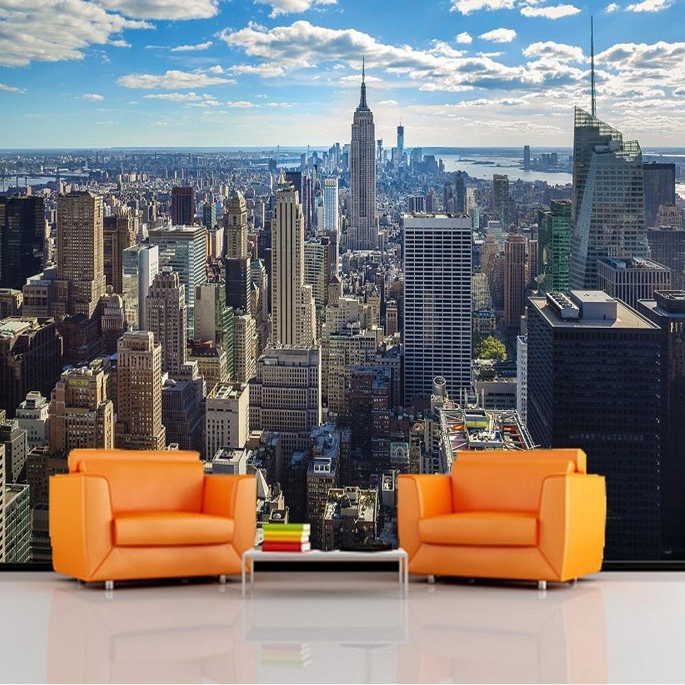 new york wall murals pictures to pin on pinterest