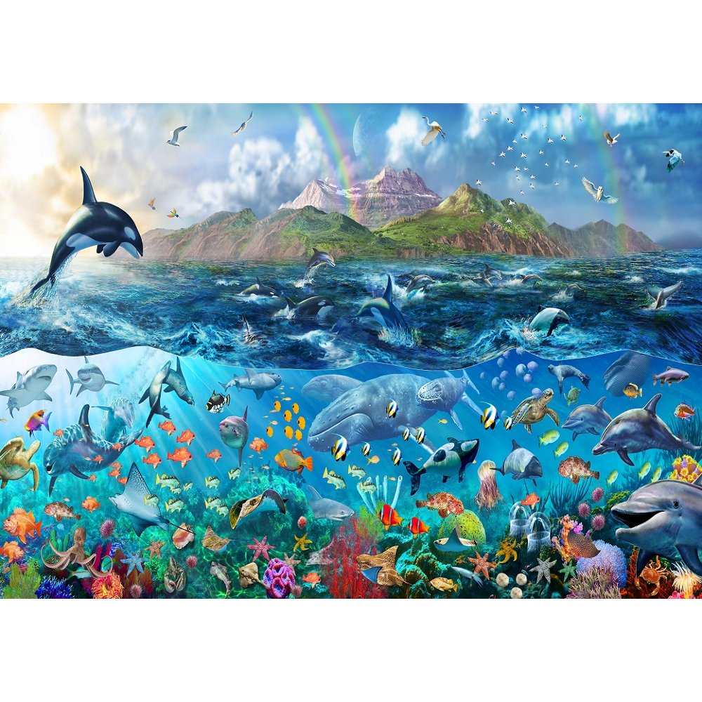 rainbow tropical underwater ocean sea life wallpaper mural