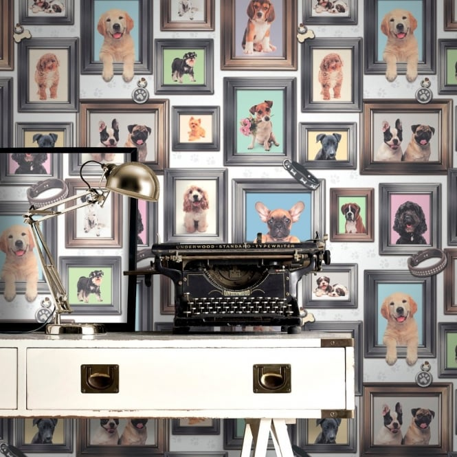 Rasch Puppy Love Dogs In Frames Pattern Picture Frame Motif Wallpaper 272703