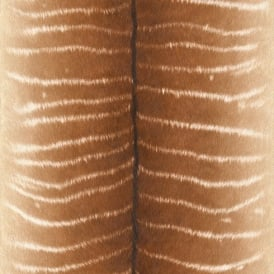 Rasch Tiger Print Stripe Pattern Faux Effect Fur Textured Wallpaper 473520